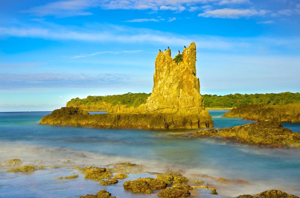 A Sunny Spot - Cathedral Rocks, Kiama Downs, NSW, Australia