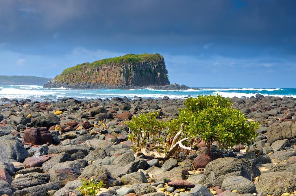 Minnamurra Island - Minnamurra, NSW, Australia