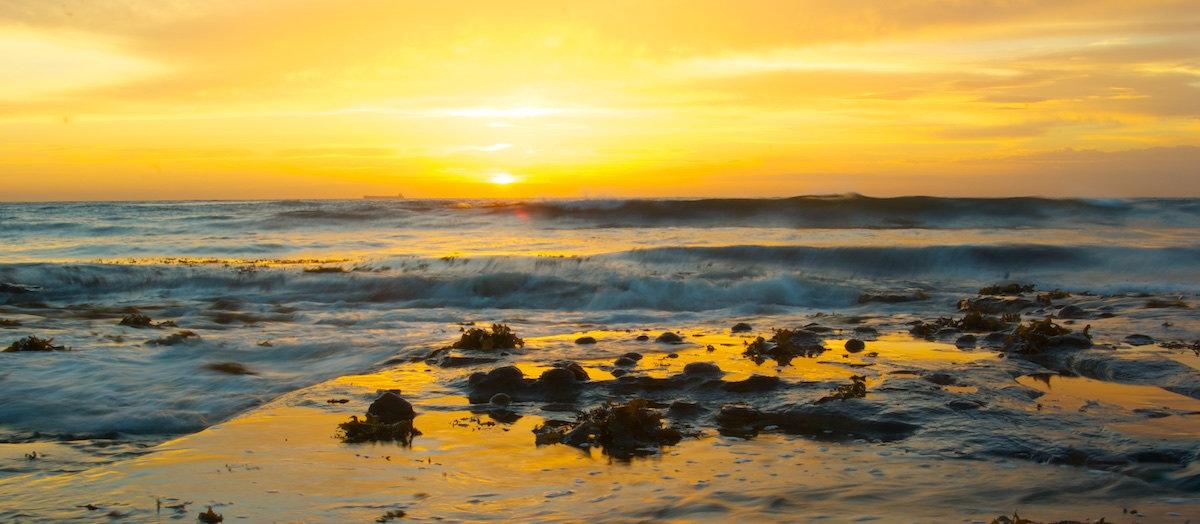 Bulli Beach Sunrise Panorama Yellow - Variant 2 - Sandon Point Beach, Bulli